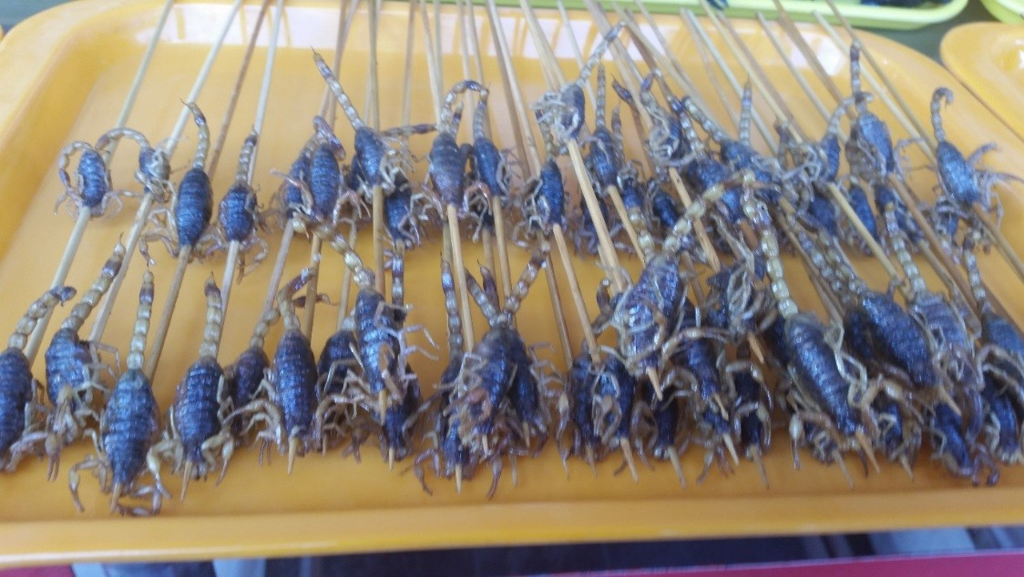 SLCHI 02 Night market in Beijing   The scorpions look quite appetising