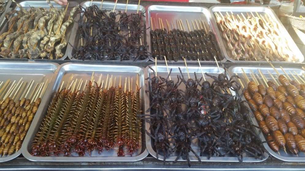 SLCHI 03 Night market in Beijing   Scorpion or spiders anyone