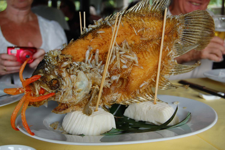 SLVN Discover Vietnam 1